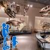 国立科学博物館に1歳と3歳を連れて行ってきました