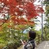 明日は岡崎で俳句を使ったビジネスセミナー♡