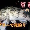 留萌港 / 夜の浮き釣りでクロゾイ!  根掛かりの心配がない浮きブラー