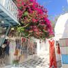 まるで絵本の世界 ミコノス島の白い街並みを歩いてみた