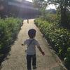 【0歳2歳育児】朝散歩のすすめ【家庭学習】