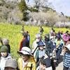 ◆福島県:猪苗代「高原列車」の景色散策 軽便ウオークに200人参加◆
