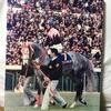 『競馬パネル:ビワハヤヒデ「1995年:引退式 京都競馬場」』