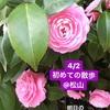 【261】初めてのお散歩@松山