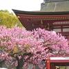 [寄り道]太宰府天満宮、九州国立博物館