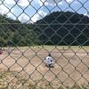 7月24日のブログ「12キロのジョグ、中学野球市長旗大会は武芸川中が優勝、小瀬鵜飼を盛り上げる会」