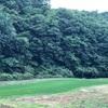 栃木県へお出かけ!!人生で初めてホタルを見ました。