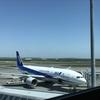 久しぶりの空港でした。