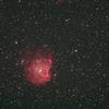 Quad BP フィルターでモンキー星雲を撮ってみました!