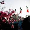 イランに行って来た(1)旅程&イラン雑感編