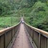 10月9日 福島県不動湯温泉と浄土平付近の紅葉 & 10月10日 職場近くの猫さま