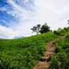 体力づくりのために大和葛城山へ日帰り登山