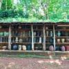 チェンライの窯元「ドイディンデーン陶器工房(Doy Din Dang Pottery)」を訪ねて【チェンライ旅行 9】
