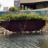 旧中川へカワセミを見に行く、春の花々