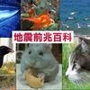 【地震前兆百科】動物分類:陸上の動物たち
