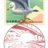 【風景印】八戸江陽郵便局(臨時出張所押印)