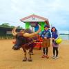 人気の由布島観光アクティビティ体験〜西表島でおすすめカヌーツアー