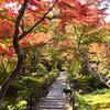 京都 嵯峨野 宝筐院。祇王寺や常寂光寺が好きな人は合わせて訪れたい場所です。(Kyoto, houkyouin)