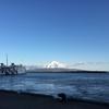 北海道礼文島移住雑感:離島で暮らすということ