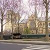 ノートルダム大聖堂の火災と「復元」の問題