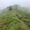 里山ハイク:茶臼山(長和町・松本市)