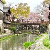 近江の八幡さん! 滋賀県近江八幡市(40/1741)