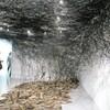 ケンジタキギャラリーの塩田千春新作展を見る