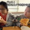 カメラ目線でも、食事は早く出てきませんよ。