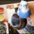 【ここすけの日常】インコが、真剣に悩む姿!編【budgerigar