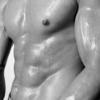 筋肉のクオリティー(筋質)