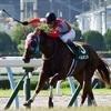 北九州記念2016予想オッズとデータ分析(傾向)と出走予定馬※レース動画あります。