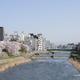男川「犀川大橋」