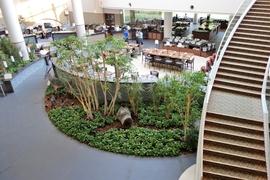ルスツリゾート ウェスティン旅行記②:メゾネットのお部屋と、ホワイトティーの香りに癒される館内を紹介
