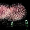 8月26日は「レインボーブリッジの日」その2~レインボーブリッチの電気代は?(*´▽`*)~