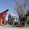 身内の要請で約1年半ぶりに津島神社に参拝した