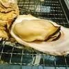 おうちバーベキュー!炭火で焼き牡蠣がうまい(´ー`)