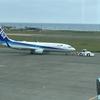 【ANA特典航空券】ANA便は空席待ち可能。ただし、他社便混在の場合不可能
