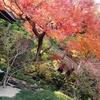 【おすすめ】鎌倉旅行で人気のスポットに行ってきました!