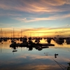マニラ・ベイウォークの夕焼けがとても綺麗!
