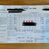 Bundabergでのファームジョブ(1月):時給制ライチをやれたのは奇跡だった!