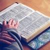 英単語帳は2冊目をやるべき?個人的にオススメは鉄壁!