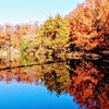 京都 宝が池と長楽館