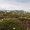 黒岳〜北鎮岳