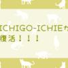【雑記】まさかICHIGO-ICHEが復活するとは…!!