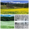 【長野県大町市】中山高原の四季はこんなに綺麗なんだよ!