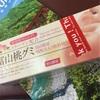 夏の日のKurobe Gorge~黒部峡谷鉄道トロッコ電車に乗って~