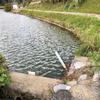 大池(岡山県久米南)
