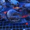 牡蠣小屋(豊前一粒牡蠣)