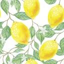 半分のレモン