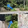 【後編】お一人様☆低山トレイル@雷電山 SUPPORTED by ジオグラフィカ